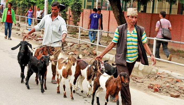 Фестиваль Дашайн в Непале