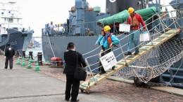 японский китобойный флот